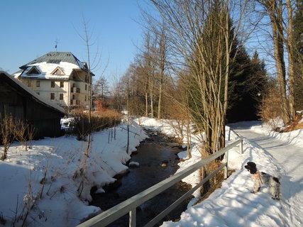 FOTKA - ranní zimní procházka