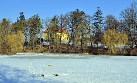 FOTKA - Zima v Trnávce