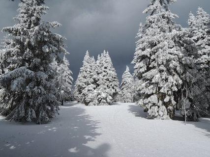 FOTKA - a už se na nás opět hrnula sněhová smršť