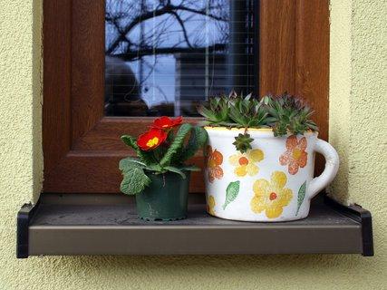 FOTKA - Na okne domu