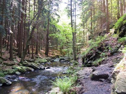FOTKA - skalnaté údolí s řekou Doubravkou
