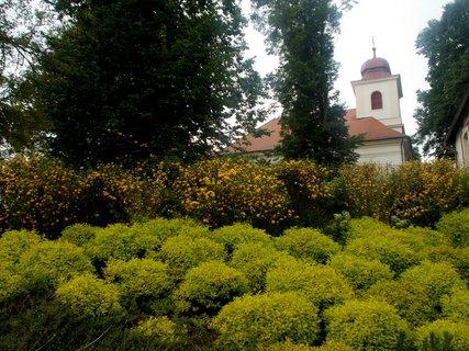 FOTKA - Pod kostelem
