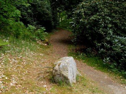 FOTKA - Kámen v cestě