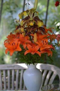 FOTKA - kytice z vlastních zdrojů