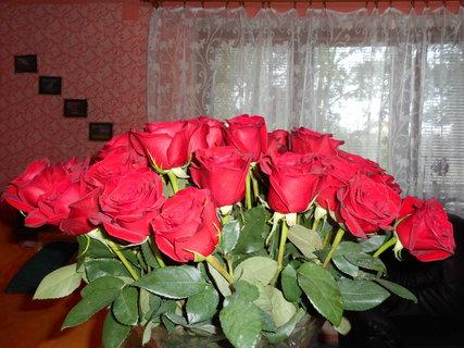 FOTKA - Kytice růží ve váze