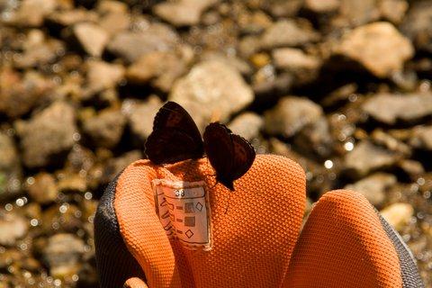 FOTKA - Výšlap k Wildseelodersee - Boty syna jim asi voněly
