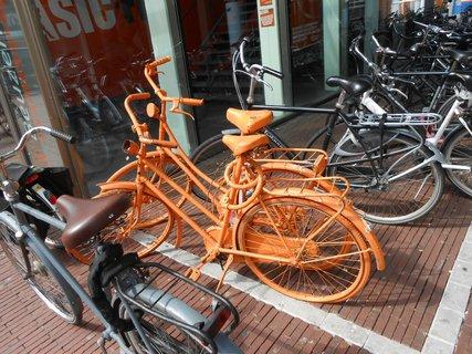 FOTKA - oranžová kola