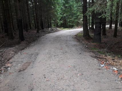 FOTKA - Ještě před týdnem to byla travnatá lesní cestička - dnes tohle
