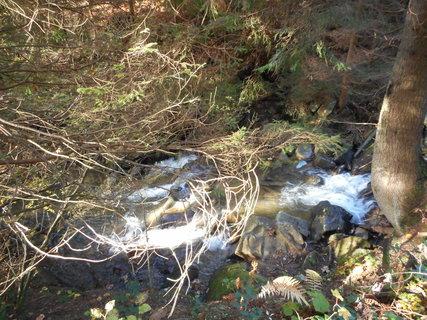 FOTKA - Horský potok