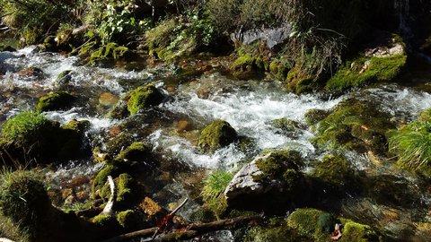 FOTKA - Podzimní procházka k Triefen - Vodička