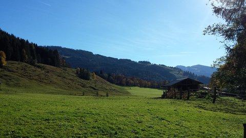 FOTKA - Podzimní procházka k Triefen - Ještě zelená louka