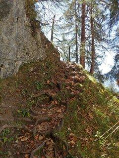 FOTKA - Podzimní procházka na Steinalm - Toto už nickdy nepůjdeme