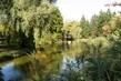Rybník ve městě