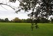 podzimní harašení, jarní řepka s podzimem
