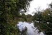 rybník za domem