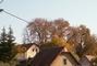 podzim u nás 29