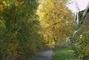 podzim u nás 28