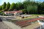 farma na cibuloviny mini
