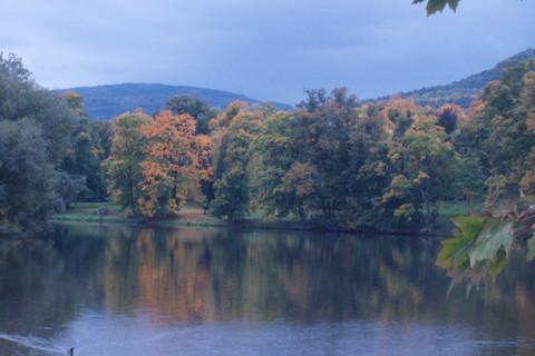 FOTKA - podzim je tu