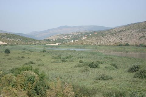 FOTKA - Hutovo blato