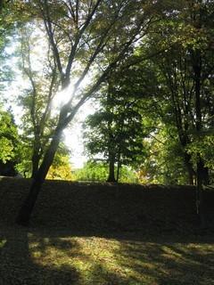 FOTKA - podzimní slunce