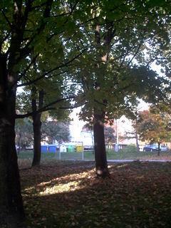 FOTKA - podzim u nas