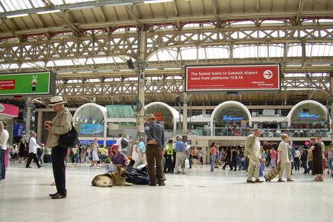 FOTKA - Victoria Station