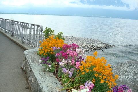 FOTKA - pobřeží