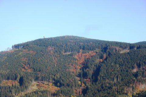 FOTKA - lesy v okolí Jeseníku