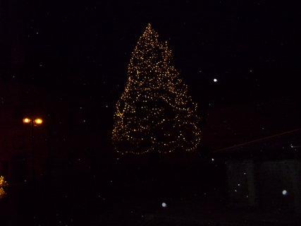 FOTKA - Ozdobený strom v zámku