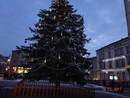 FOTKA - Ozdobený vánoční strom 2017