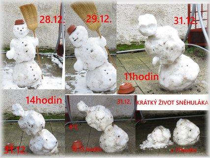 FOTKA - Krátký život sněhuláka