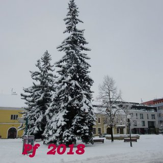 FOTKA - PF 2018
