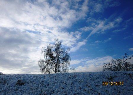 FOTKA - 29. prosince byl sníh