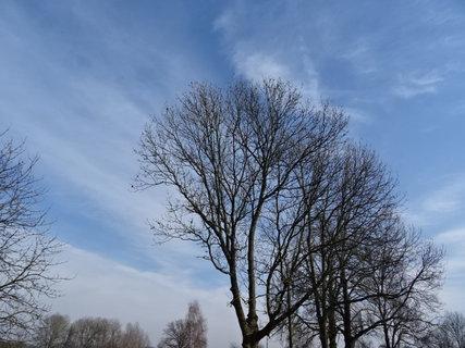 FOTKA - Jeden krásný sluneční den