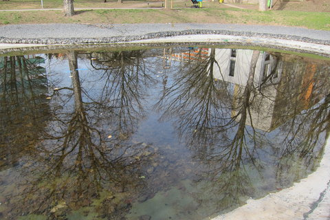 FOTKA - Sídliště a odrazy na hladině umělého rybníčku
