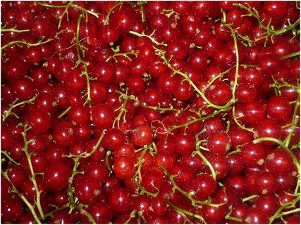 FOTKA - Bude marmeláda na linecké slepované