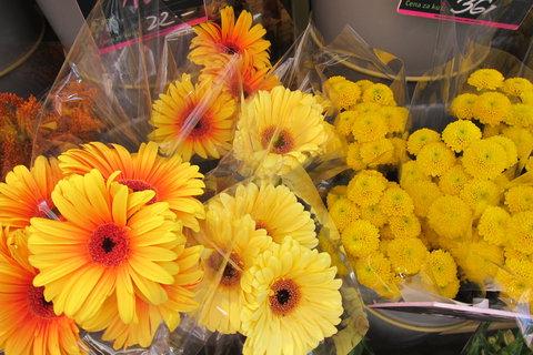 FOTKA - Jindřišskou ulicí - kolem Květinářství