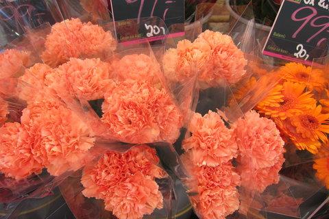 FOTKA - Jindřišskou ulicí - kolem květinářství, kde nabízí květiny všech barev