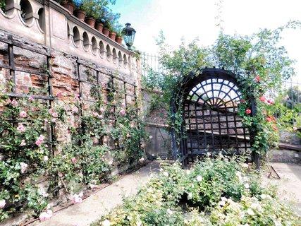 FOTKA - Ruzova zahrada
