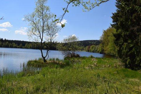 FOTKA - Pravý břeh rybníka- Kladská