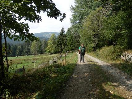 FOTKA - cestou k zaniklé šumavské osadě Horní Světlé Hory