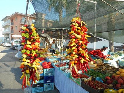 FOTKA - Výběr paprik