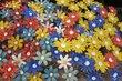 Květy na vánočním trhu