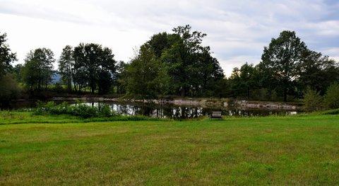 FOTKA - Zapomenutý rybník a lavička
