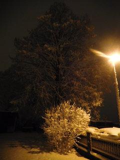 FOTKA - Zasněžené ráno - před naším domem (12.12.)