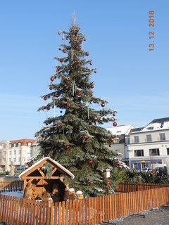 FOTKA - Vánoční strom a betlémem