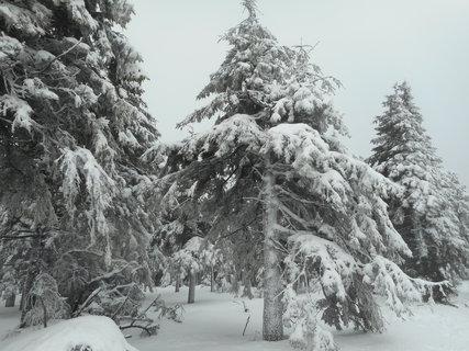 FOTKA - Pravá zima - Šerák
