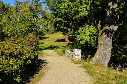 FOTKA - V parku je i můstek