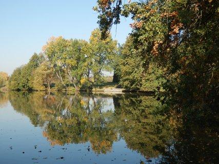 FOTKA - rybníky a jiná voda: rybník v dendrologické zahradě u Čestlic